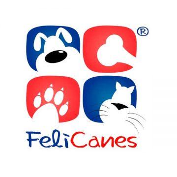 Felicanes