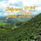 Informe PIT Santa Rosa de Cabal Junio 2019